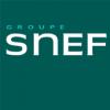 SNEF-logo-rvb